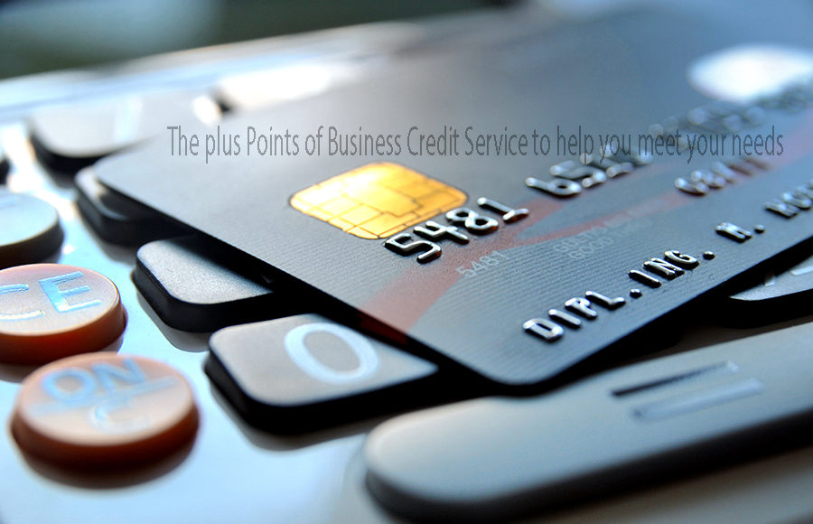 The plus Points of Business Credit Service to help you meet your needs